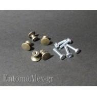 metal knobs x entomological box- drawers