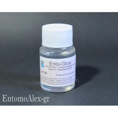 30ml jar entomological glue