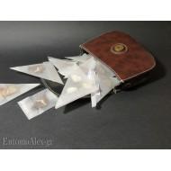 belt bag x butterfly glassine envelopes