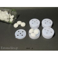 x5  Camphor containers for spare beetles box