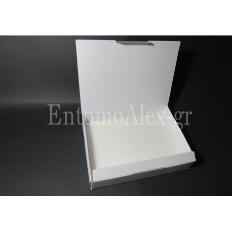 5x  Cardboard 18x24 transport insects boxes