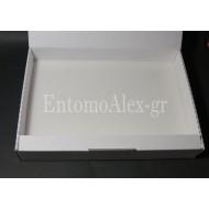 1x  Cardboard 22,5x32 transport insects box