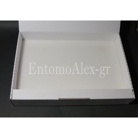5x  Cardboard 22,5x32 transport insects box